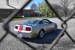 'Stang Through a Fence